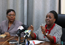 Profesa Joyce Lazaro Ndalichako Elimu